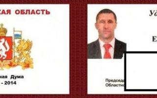 Статья 8. Взаимоотношения депутата Государственной Думы с избирателями