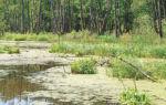 Статья 6. Гидромелиорация земель