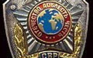 Глава II. Организация деятельности органов внешней разведки российской федерации