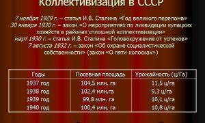 Проведение коллективизации и её последствия — история России