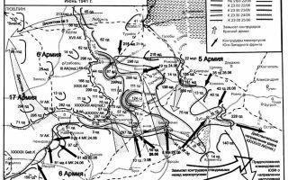 Окружение вражеских войск в районе брод: освобождение львова — история России