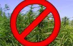 Статья 18. Культивирование наркосодержащих растений