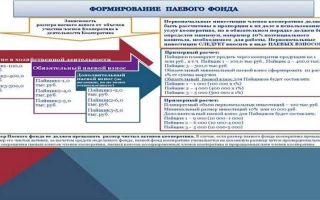 Статья 35. паевые взносы и паевой фонд кооператива