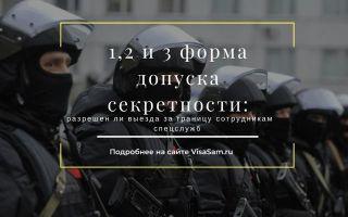 Статья 21.1. Особый порядок допуска к государственной тайне