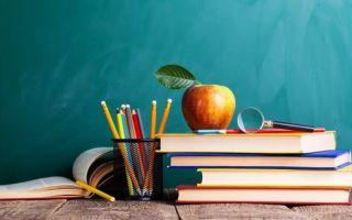 Статья 6. дополнительные гарантии права на образование