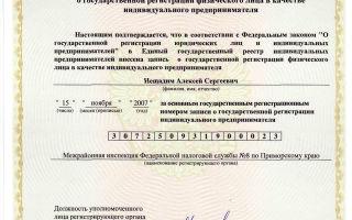 Свидетельство о государственной регистрации ИП — советы юриста