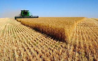 Федеральный закон от 24.07.2002 n 101-фз (ред. от 30.04.2021) «об обороте земель сельскохозяйственного назначения»