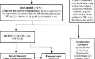 Статья 29. адвокатская палата субъекта российской федерации