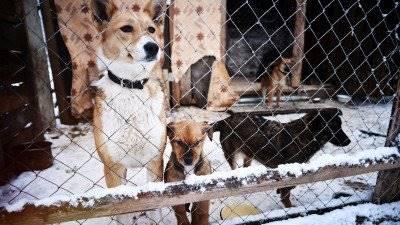Статья 35. Условия пользования животным миром