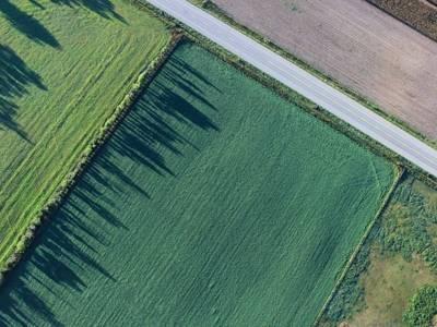 Статья 39. Ответственность за нарушение законодательства Российской Федерации в области мелиорации земель