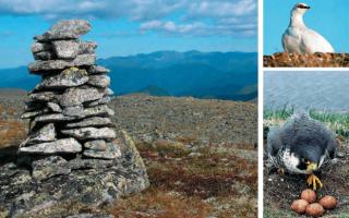 Статья 2. Категории особо охраняемых природных территорий, особенности их создания и развития