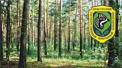 Раздел X. Ответственность за нарушение режима особо охраняемых природных территорий