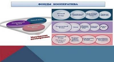 Статья 10. Паевой фонд кооператива