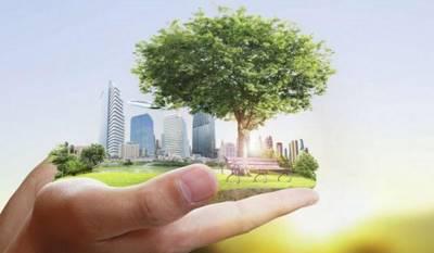 Законодательство по охране окружающей среды - советы юриста