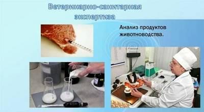 Статья 21. Ветеринарно-санитарная экспертиза
