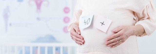 Статья 40. Разрешение на проведение трансплантации эмбрионов