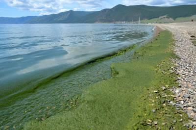 Статья 2. Экологическое зонирование Байкальской природной территории
