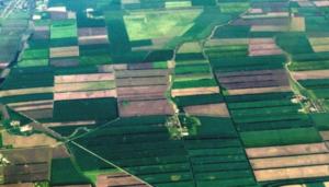 Глава II. Особенности оборота земельных участков из земель сельскохозяйственного назначения