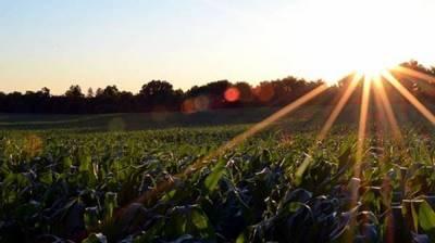 Статья 9. Аренда земельных участков из земель сельскохозяйственного назначения
