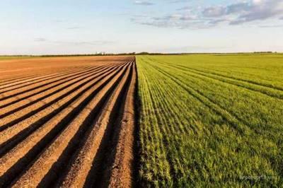 Глава III. Особенности оборота долей в праве общей собственности на земельные участки из земель сельскохозяйственного назначения