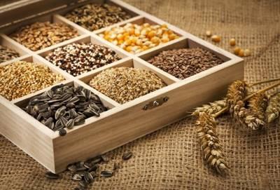 Глава V. Заготовка, обработка, хранение и использование семян