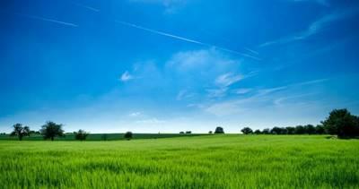 Статья 8. Купля-продажа земельного участка из земель сельскохозяйственного назначения