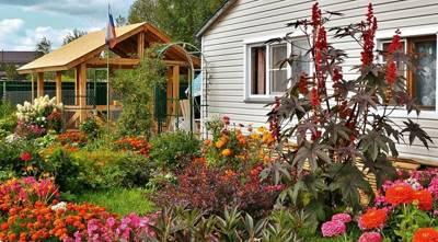 Статья 39. Реорганизация садоводческого, огороднического или дачного некоммерческого объединения
