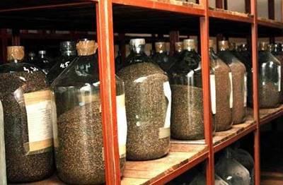 Статья 25. Общие требования к определению сортовых и посевных качеств семян