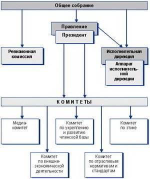 Статья 4. Основные цели и задачи ассоциации