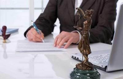 Статья 1. Адвокатская деятельность