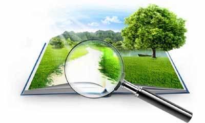 Статья 24.11. Понятие государственной кадастровой оценки