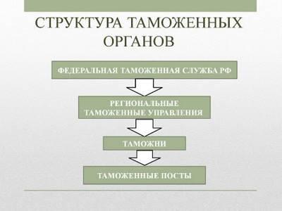 Статья 1. Служба в таможенных органах