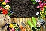 Глава II. Формы ведения гражданами садоводства, огородничества и дачного хозяйства